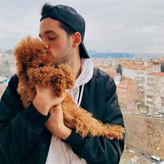 Orkun Işıtmak and Toy Poodle elite puppy